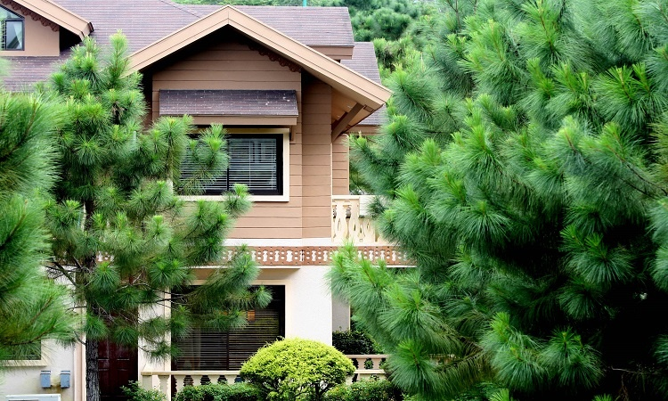 A Swiss-inspired luxury house in the middle of a forest of Pine Trees | Crosswinds Tagaytay | Luxury Homes by Brittany Corporation