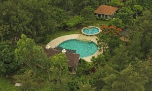 A swimming pool right in the middle of luscious greenery in Crosswinds Tagaytay's development of luxury houses | Luxury Homes by Brittany Corporation