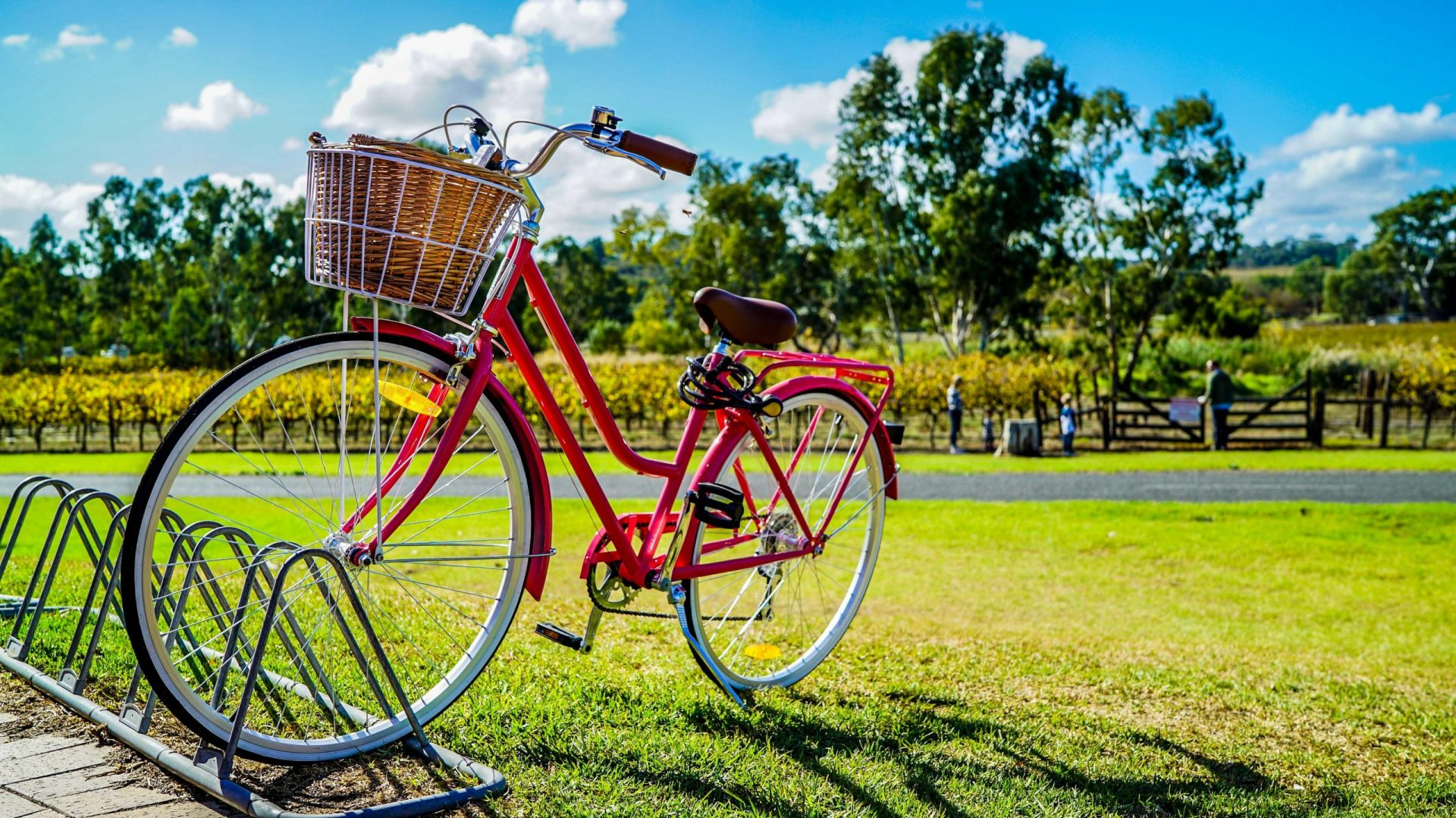 Red bike parked in an open space park in the luxury house and lot development - Luxury Homes by Brittany