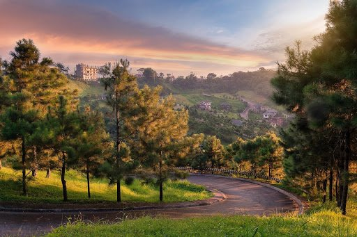 Grassy mountainside and pine tree lined path of paved road curving downwards, overlooking a view of a mountain range with exclusive mansions and buildings surrounded by nature, under a cloudy purple sunset sky | Luxury Homes by Brittany Corporation