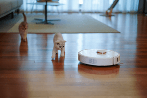 robot vacuum sweeping the floor next to two cats in a living room | Luxury Homes by Brittany Corporation