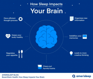 Infographic showing how sleep impacts the brain - Luxury homes for sale - Brittany Corporation