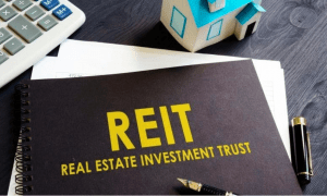 Real estate investment trust (REIT) - House and lot for sale, condo for sale, lots for sale - Brittany Corporation