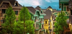 Colorful Swiss Quadrilles surrounding pine trees.   LUXURY HOMES BY BRITTANY CORPORATION