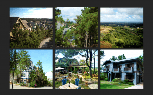 Image gallery of Swiss inspired exclusive development with pine tree forest that can have the most expensive paintings