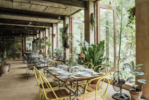Burrow Cafe at Antipolo Beehouse | Luxury Homes by Brittany Corporation