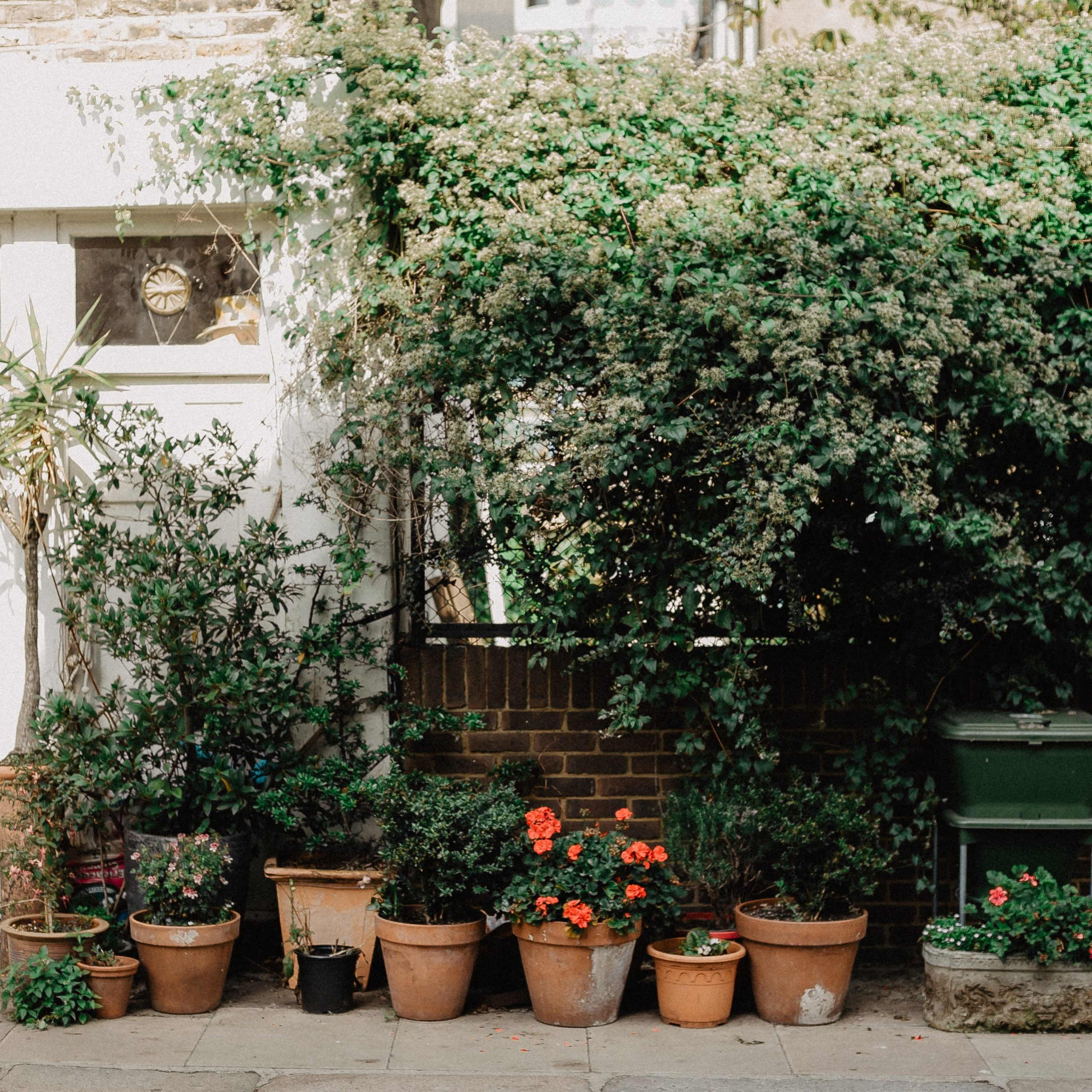 The potted plants in the garden of a luxury home   Brittany Corporation