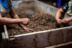 Two workers preparing soil in a container for composting | Luxury Homes by Brittany