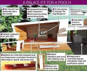 Infographic of healthy home or house for pets dogs and cats | luxury homes by Brittany Corporation