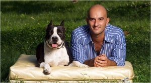 Black and white Pitbull dog with bald Western male pet owner lying on golden cushion in the grass outdoors | luxury lifestyle and homes by brittany corporation