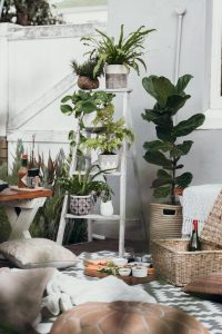 plants in blown plant boxes in luxury condo | Luxury Homes by Brittany Corporation