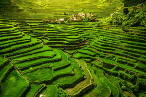 The Batad Rice Terraces in Banaue is one of the most iconic travel spots to visit in the Philippines