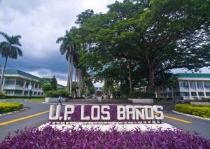 University of the Philippines Los Banos   Luxury Homes by Brittany Corporation
